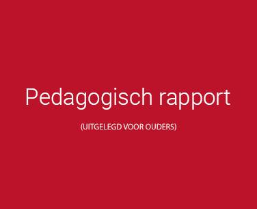 pedagogisch rapport
